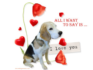 beagle love quote