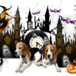 Castle halloween