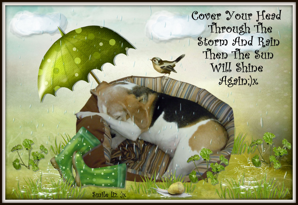 Beagle Design With Meaniful Words, My Design With Quote, Beagle and Quote,