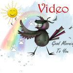 Good Morning To You Video