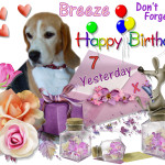 Happy Birthday Breeze
