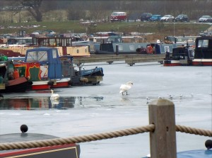 Mercia Marina, Ice On Canal,