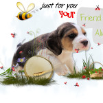 Just For You Your Friend Always