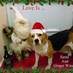 Love Is ... Santa And Ginger Wine x
