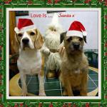 Love Is ... Santa x