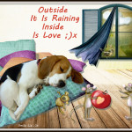 Outside It Is Raining Inside Is Love