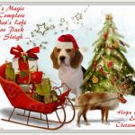 Santa's Magic Now Complete