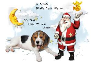 Christmas,Christmas Design,Christmas Verse,