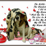 The Kettle Is On  Face Book Friends