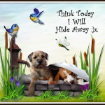 Think Today I Will Hide Away