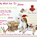Wish List To Santa