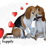 love Unconditionally Live Happily