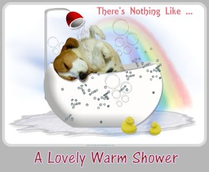 Nothing Like A Warm Shower