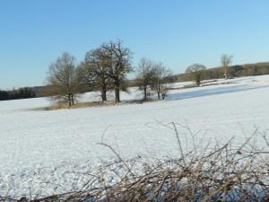 Snow, Matlock Derbyshire, Scenery, Nature, Snowy Landscape Photographs, Derbyshire,