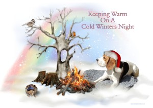 6 Keeping Warm On A Cold Winters Night