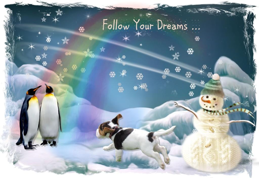 A 5 follow your dreams
