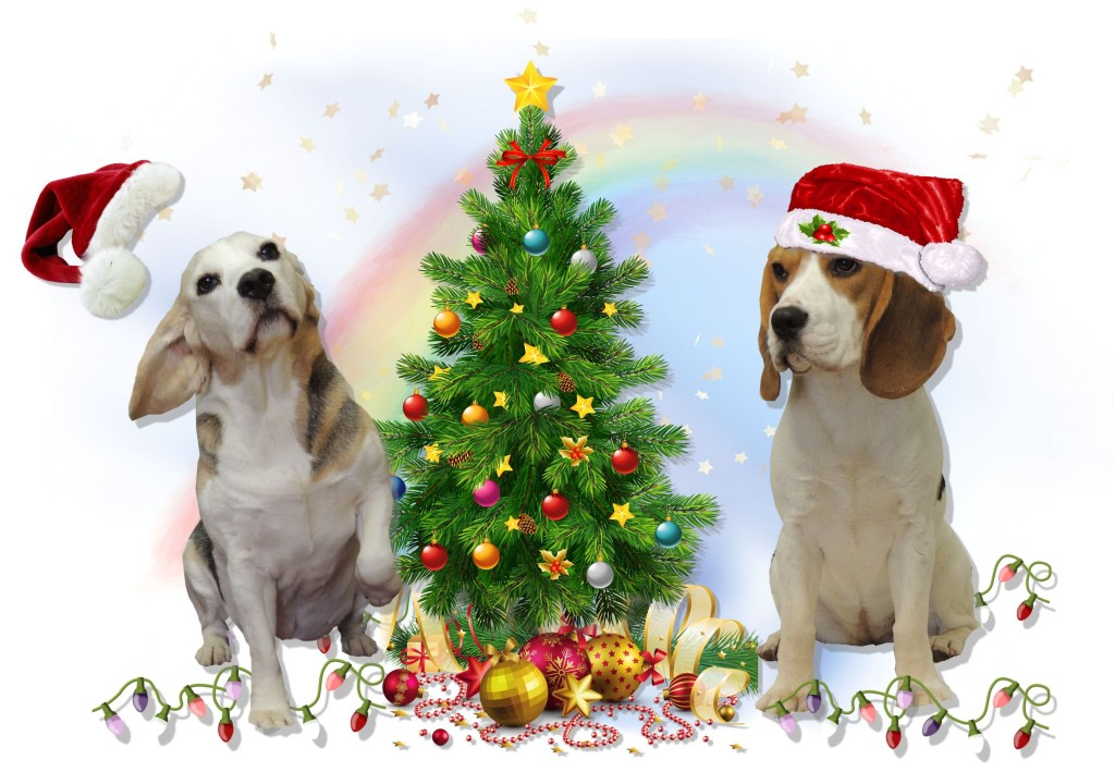 Oh No Those Christmas Tree LightsTree Lights